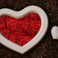 heart-1702854_1280